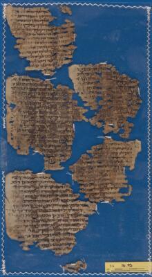 """<bdi class=""""metadata-value"""">Palimpsest: New Testament; midraš T-S 16.93</bdi>"""