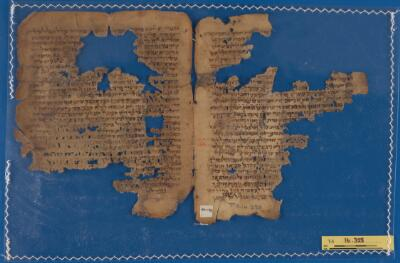 """<bdi class=""""metadata-value"""">Palimpsest; Palestinian Talmud T-S 16.328</bdi>"""