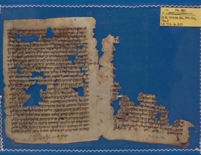 """<bdi class=""""metadata-value"""">Midraš; palimpsest T-S 16.351</bdi>"""
